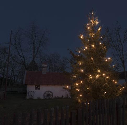 Weihnachten-Helga Partikel
