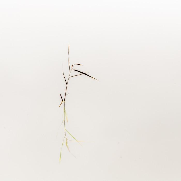 Wabi-Sabi, foto.kunst.kultur, Helga Partikel, Fotokurs