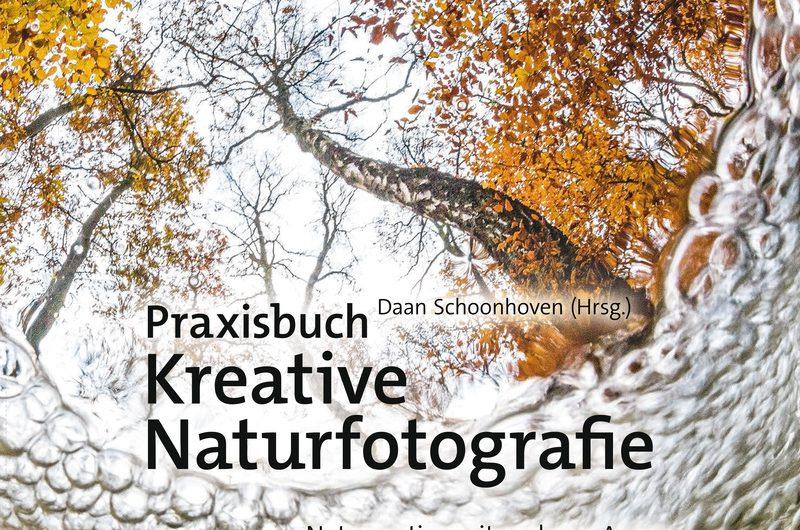kreative naturfotografie