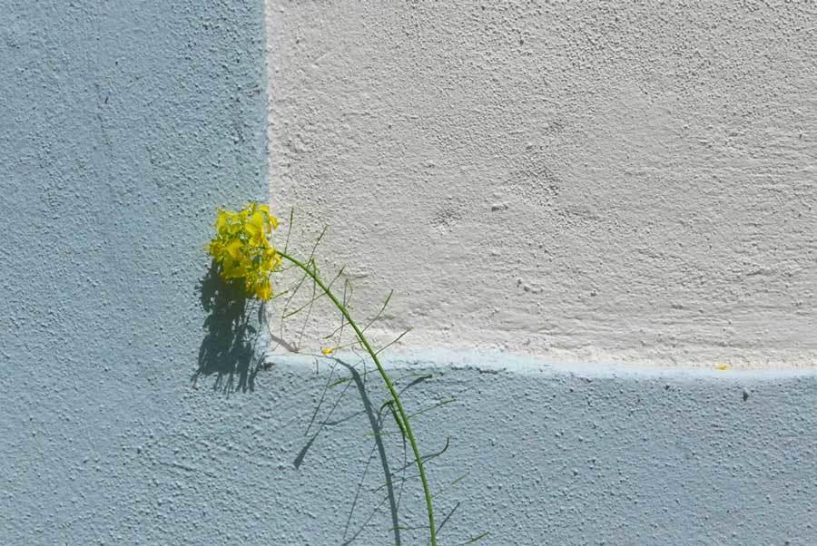 Freude am Sehen, Kontemplative Fotografie, © Hiltrud Enders, foto.kunst.kultur