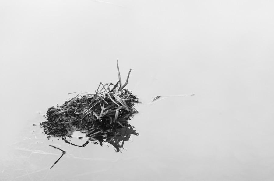 Egon Furrer, Wabi-Sabi, foto.kunst.kultur