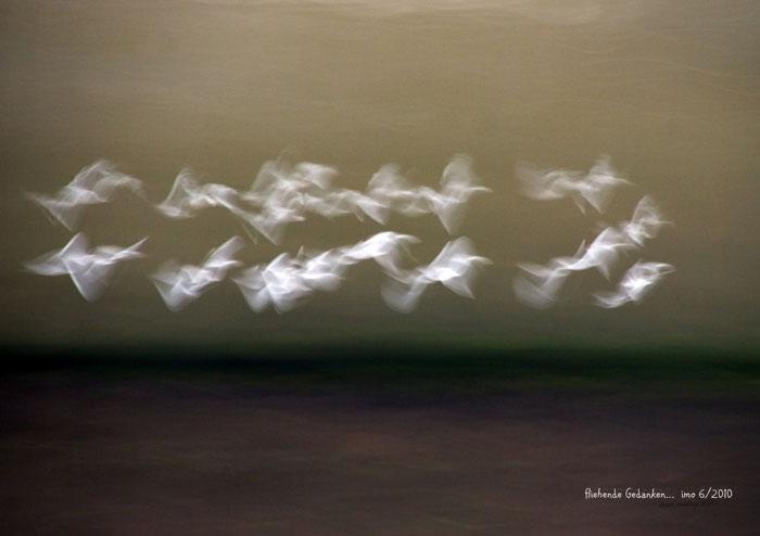 foto.kunst.kultur, facebook-Challenge, Ilona Montag